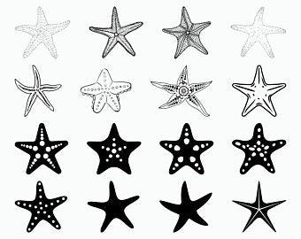 Starfish clipart.