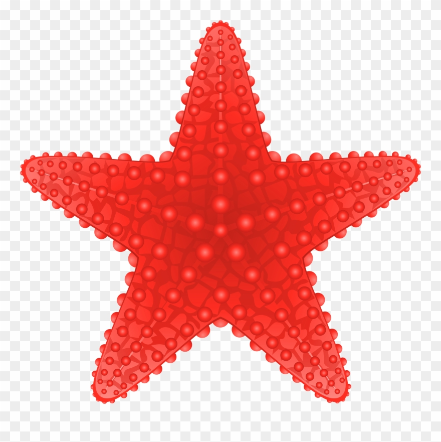 Starfish Transparent Png Clip Art Image Beach Clipart.