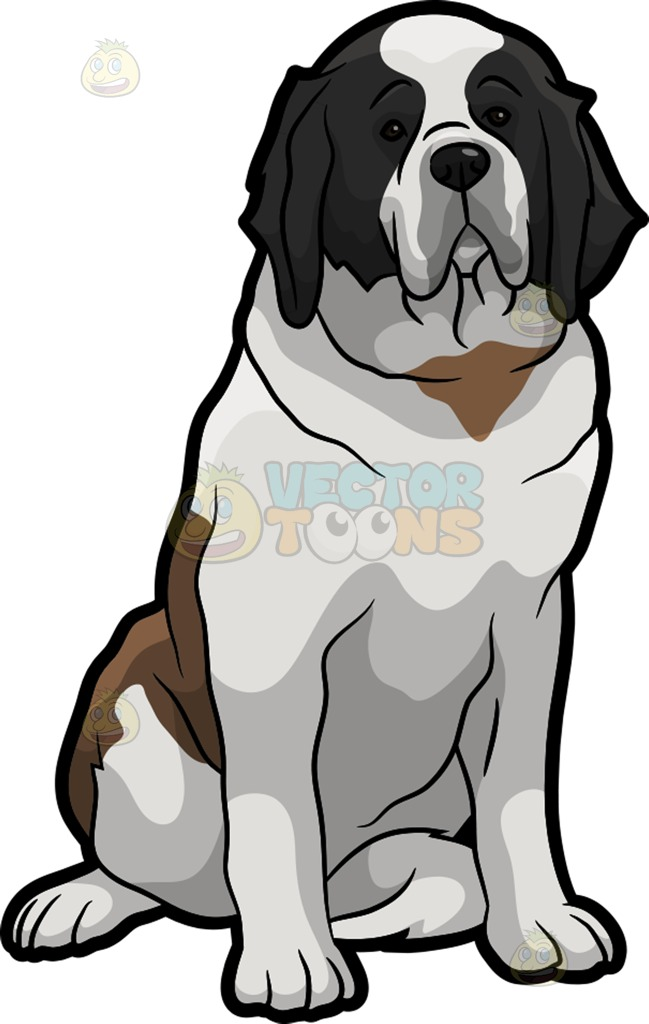 A Quiet St Bernard Dog Cartoon Clipart.