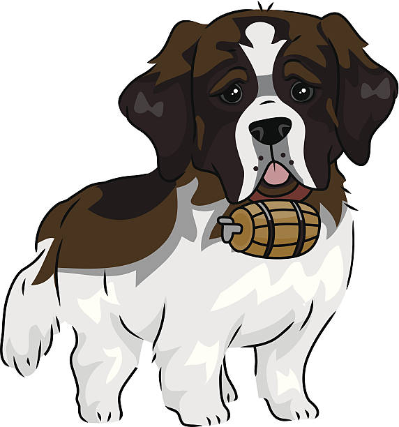 Saint Bernard Dog Clip Art, Vector Images & Illustrations.