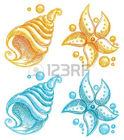 21,902 Starfish Stock Vector Illustration And Royalty Free.