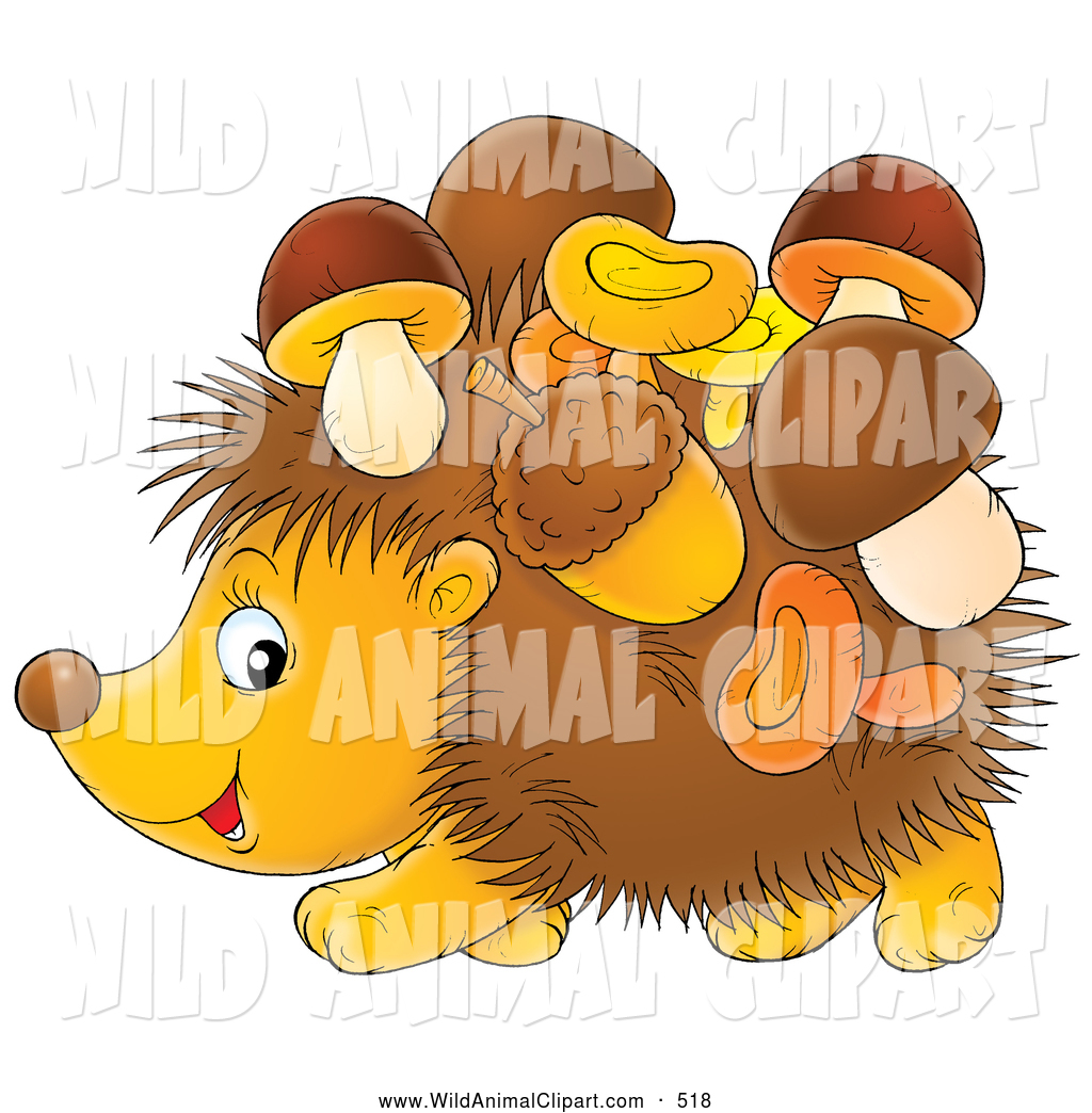 Clip Art of a Friendly Acorns and Mushrooms Stuck to a Hedgehog by.