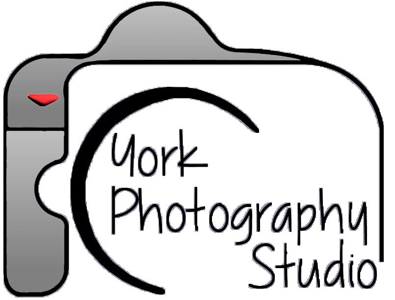 Clipart studio director photography, Clipart studio director.