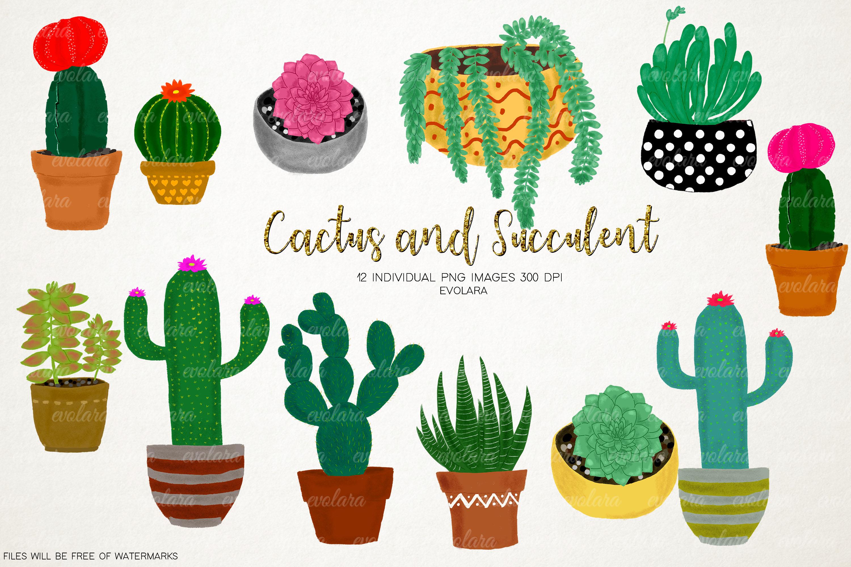 Boho Cactus Clipart Succulents Clipart Plant Clipart Cactus.