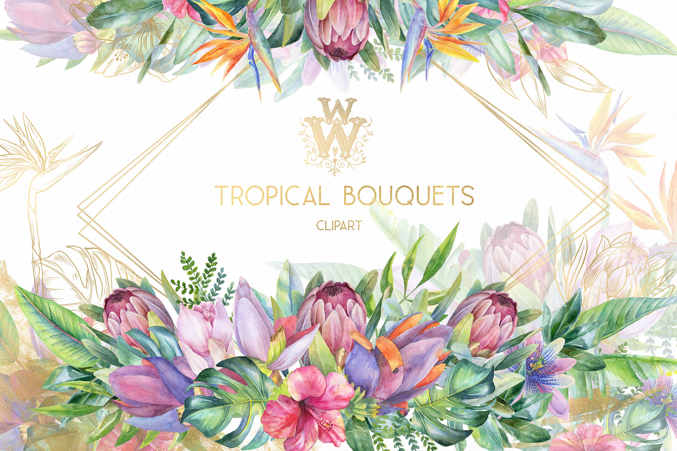 Watercolor tropical clip art, floral border clipart, summer.