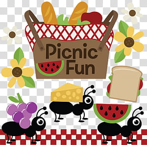 Summer , picnic fun.