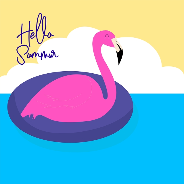 Flamingo Swimming In The Summer Season, Flamingo, Summer, Background.