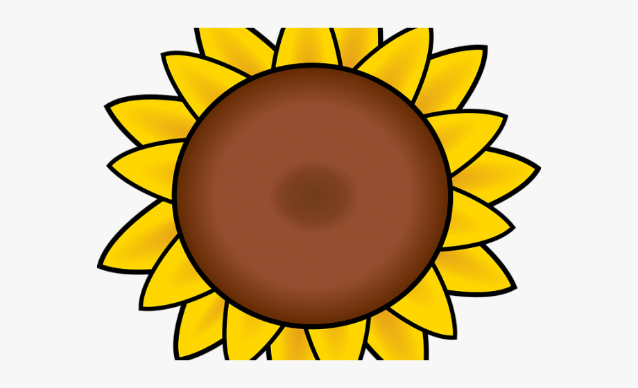 Petal Clipart Sun Flower.