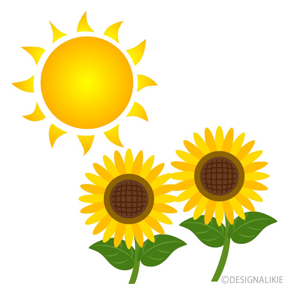 Free Sun and Sunflower Clipart Image Illustoon.