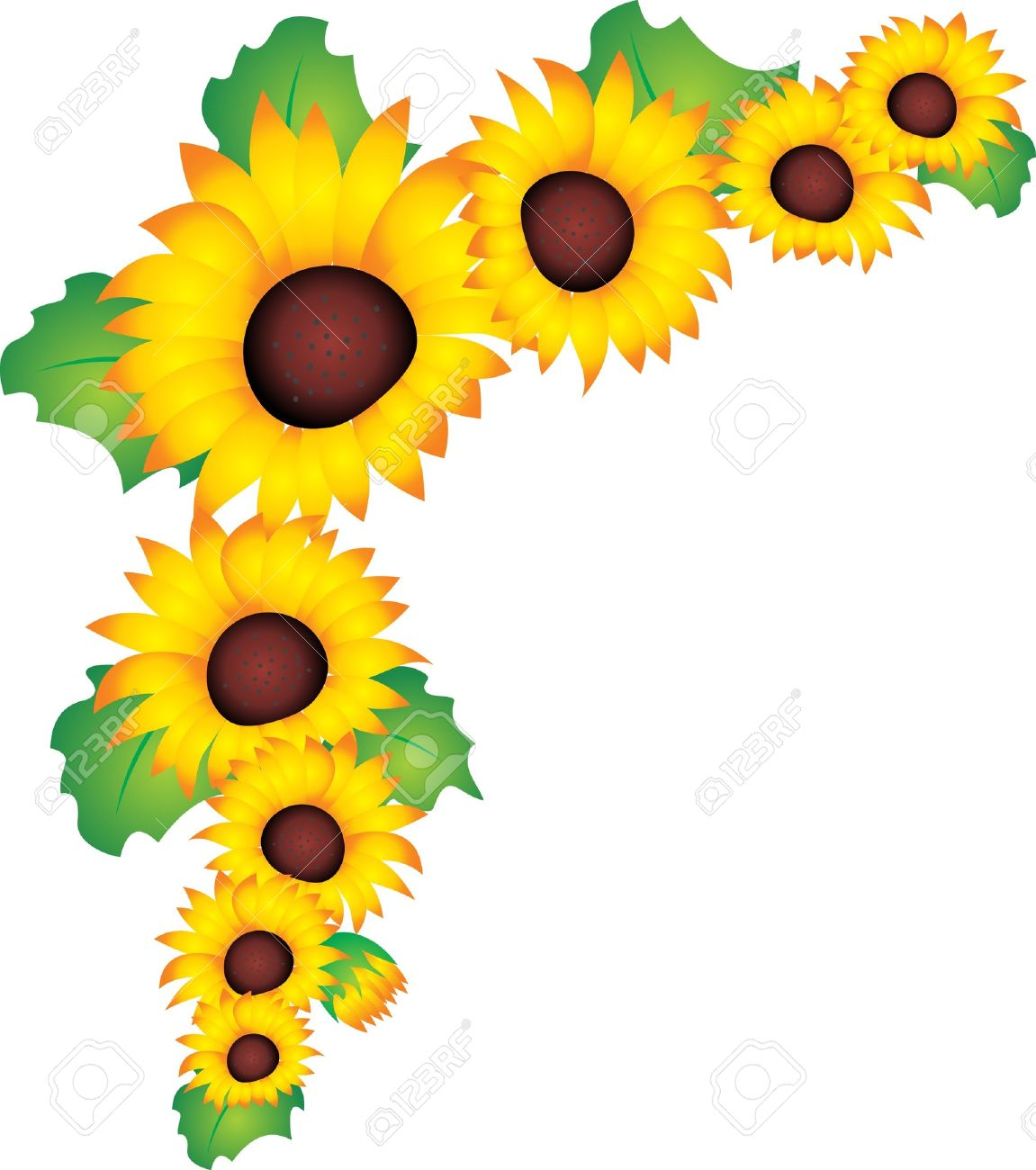 Vector clipart sunflower pencil and in color jpg.