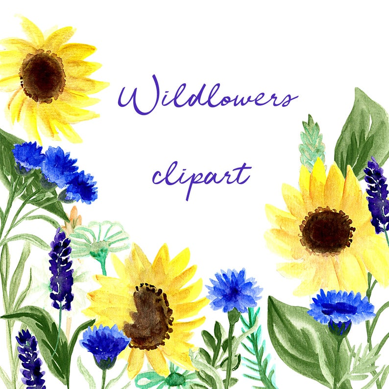 Wildflower Clipart, Sunflower Clip Art, Watercolor Wildflowers, Wildflower  Png, Watercolor Png, Wildflower Bouquet, Sunflower Design.