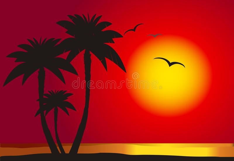 Sunset Beach Sunlight Stock Illustrations.