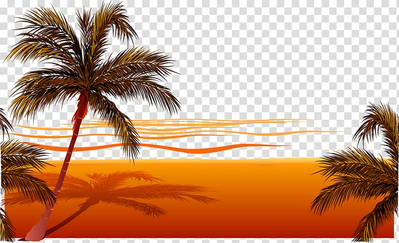 Palm trees on seashore art, Beach Sunset , beach transparent.