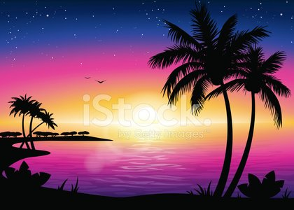 Sunset Beach Landscape With Palm Tree Silhouette premium clipart.