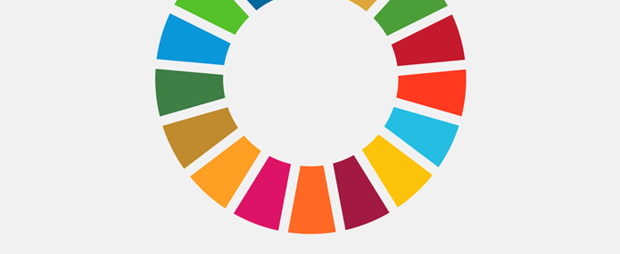 What to expect from the first SDG Summit?.