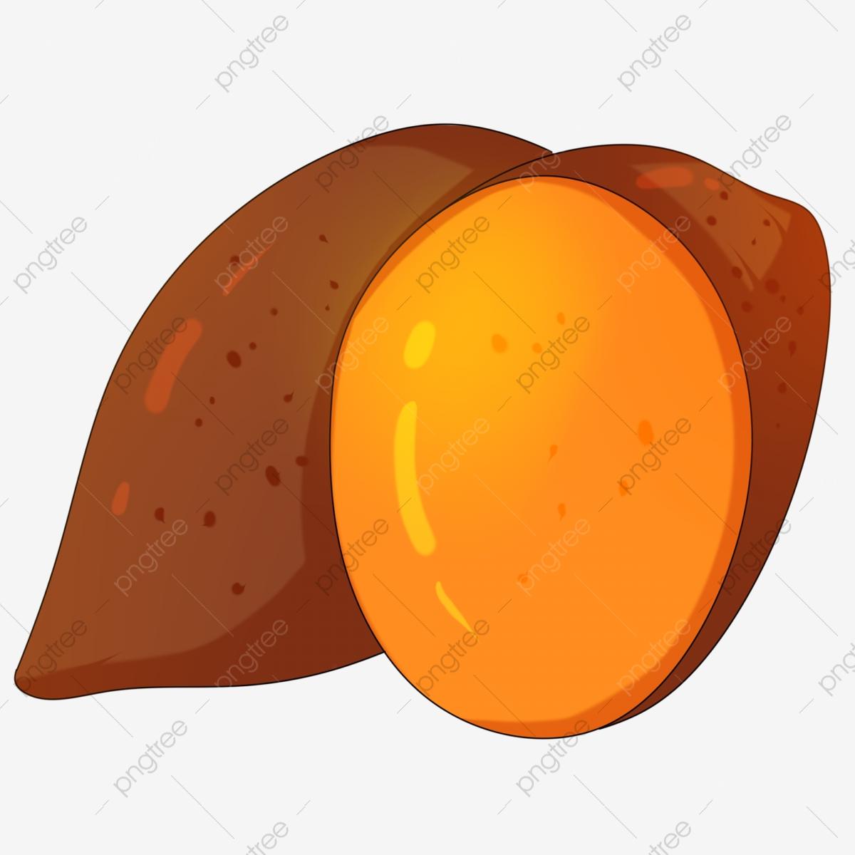Sweet Potatoes, Produce, Sweet Potato, Food PNG Transparent Clipart.