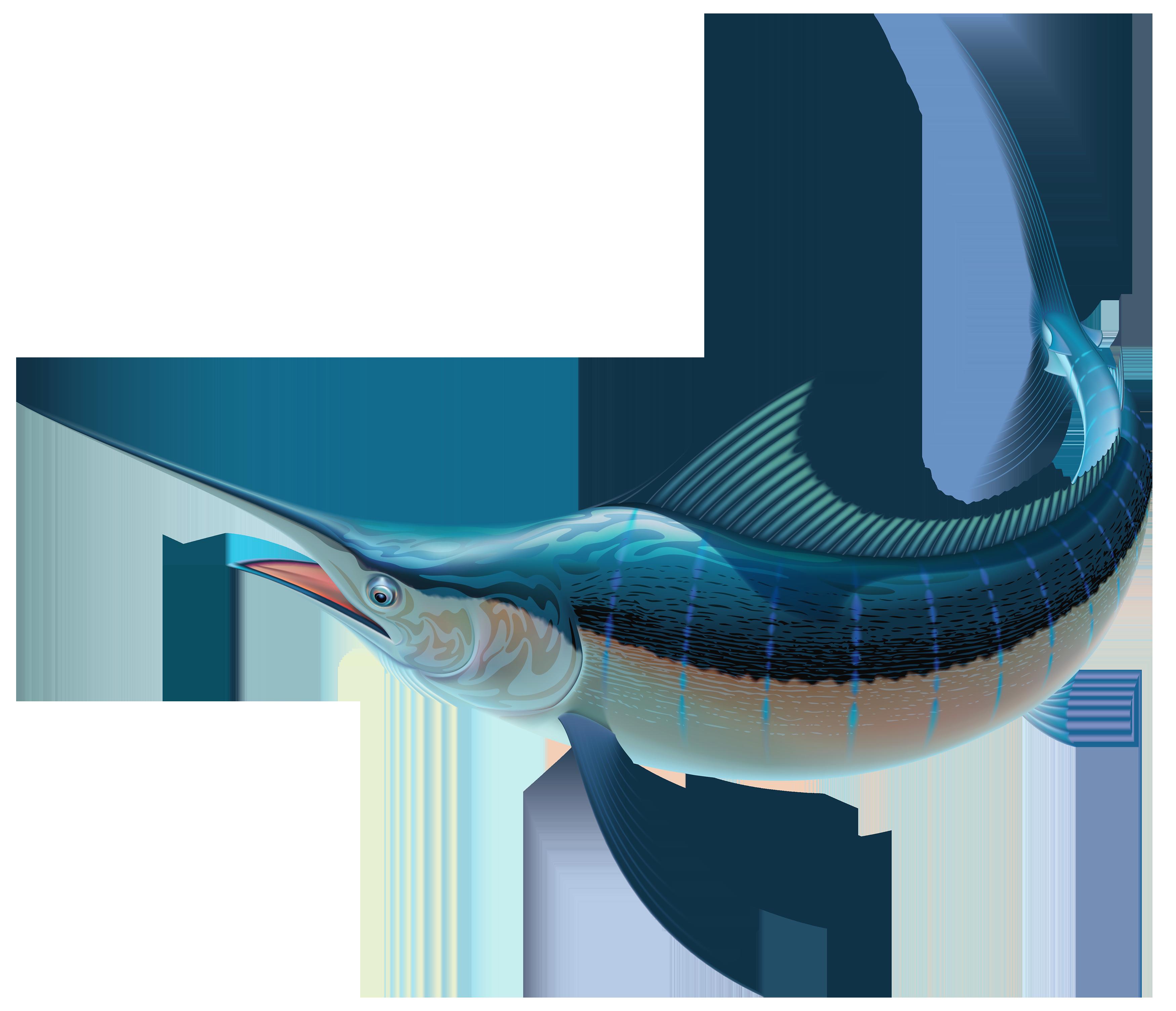 Swordfish PNG Clipart.