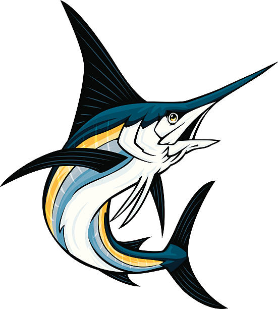 Best Swordfish Illustrations, Royalty.