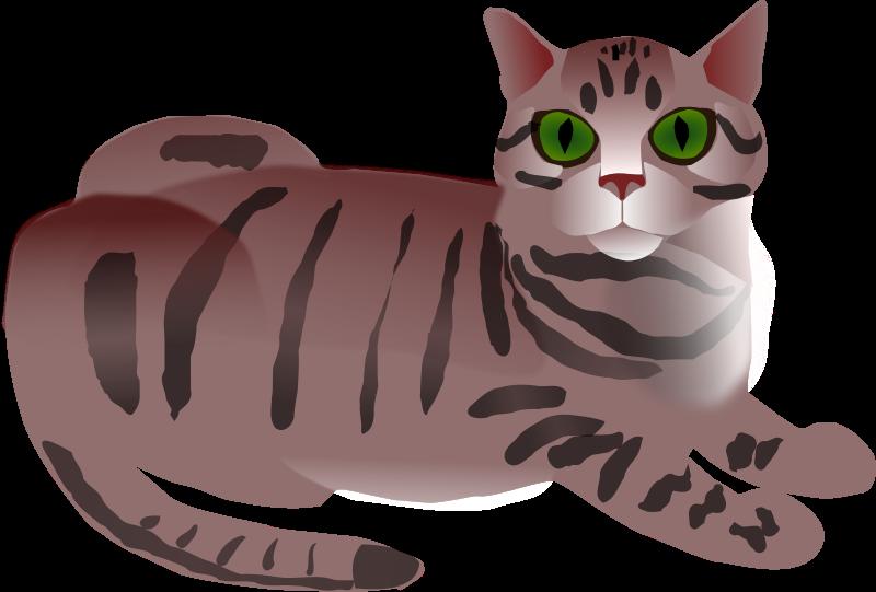 Free Clipart: Tabby Cat.