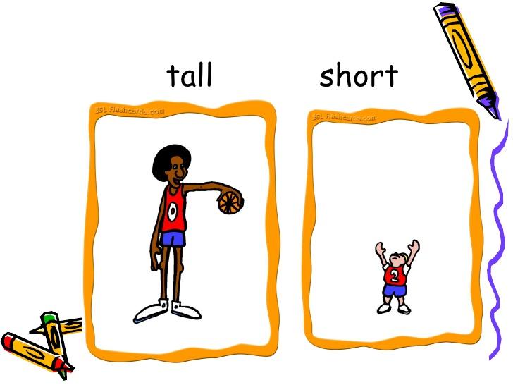 Tall short clipart.