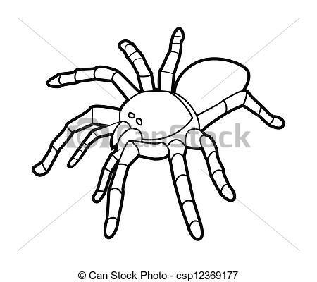 tarantula clipart.