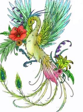 color Birds of Paradise tattoo idea.