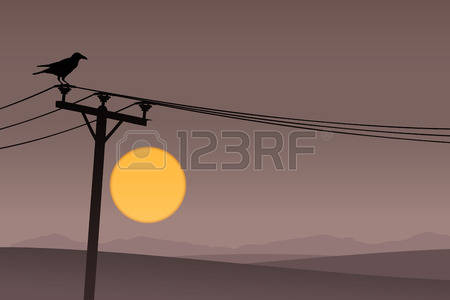 765 Telephone Pole Stock Illustrations, Cliparts And Royalty Free.