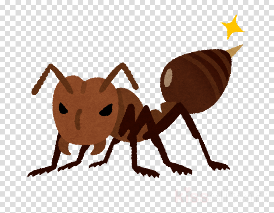 insect ant pest cartoon termite clipart.