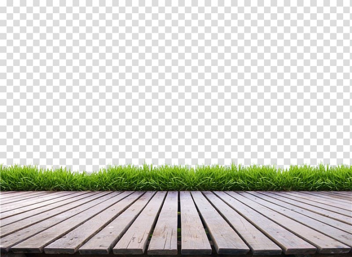 Brown wooden floor near green grasses, Floor Terrace Wood.