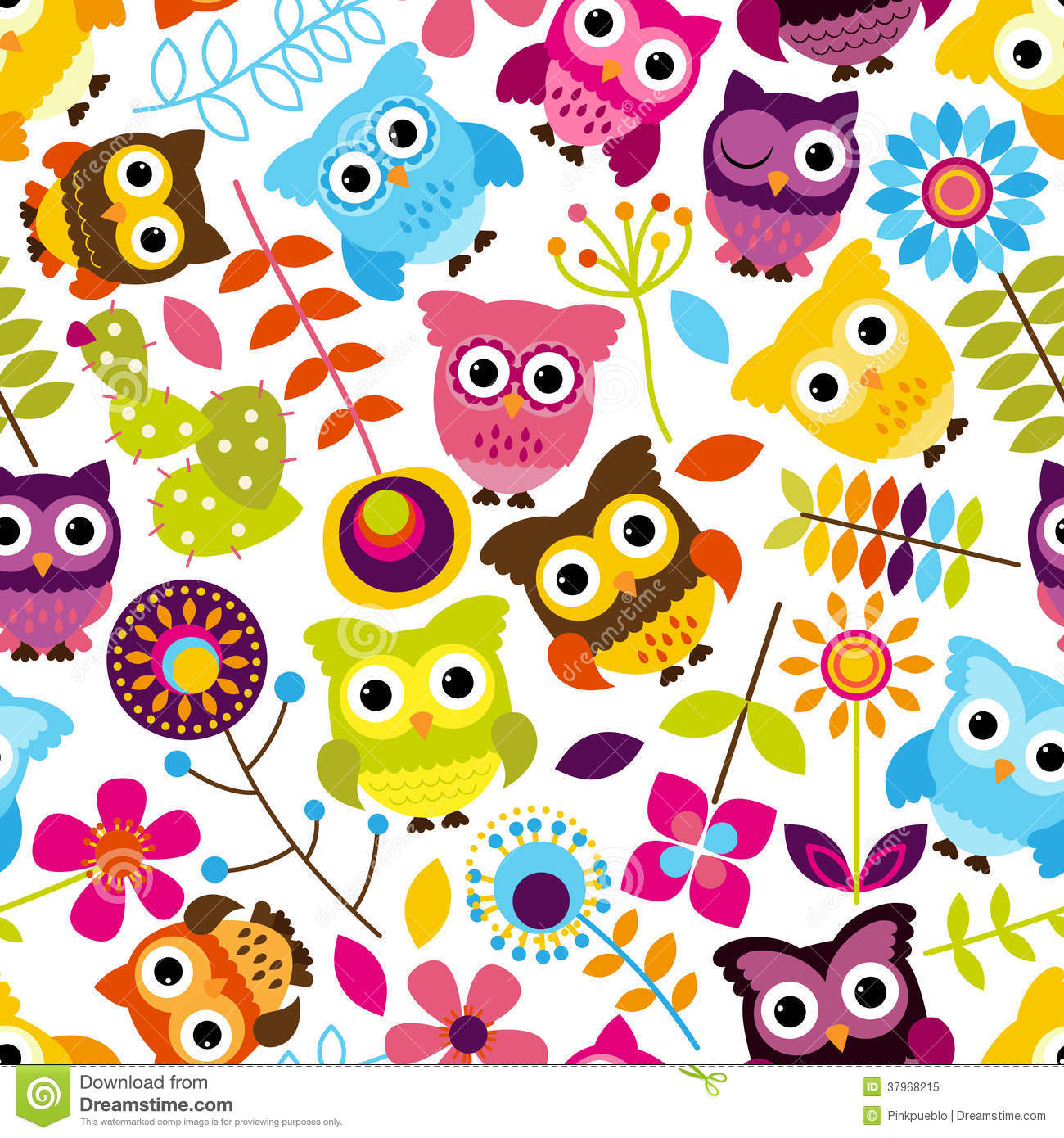 Owl Stock Illustrations.