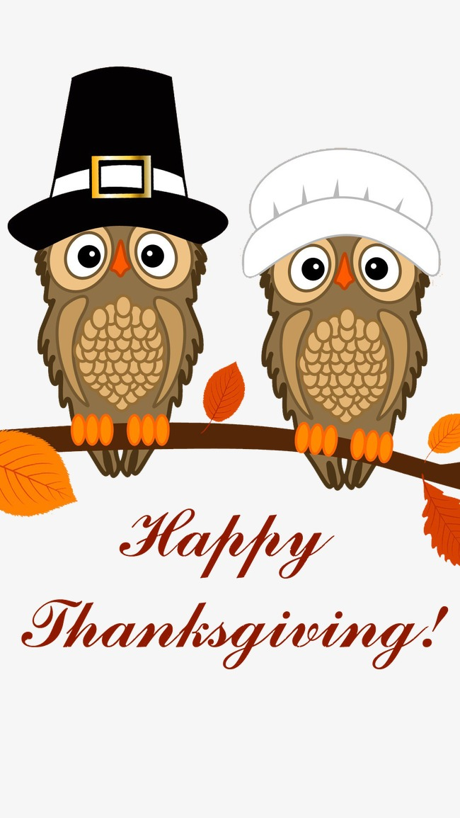Thanksgiving owl clipart 3 » Clipart Station.