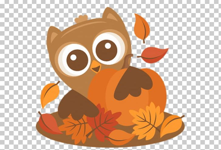Owl Autumn Thanksgiving Scalable Graphics PNG, Clipart.