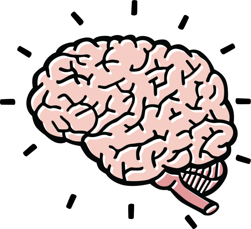 Thinking Brain Clipart.