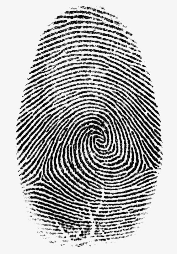 Fingerprint PNG, Clipart, Along, Along With Fingerprints.