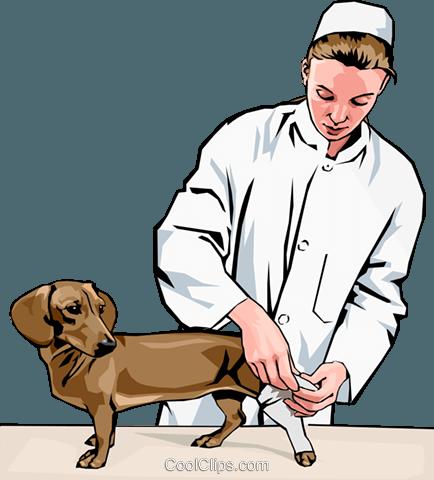 Tierarzt clipart » Clipart Station.