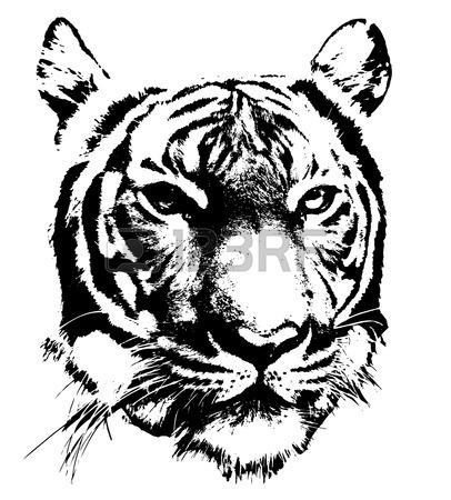 Black And White Silhouette Of A Tiger's Face Royalty Free Cliparts.
