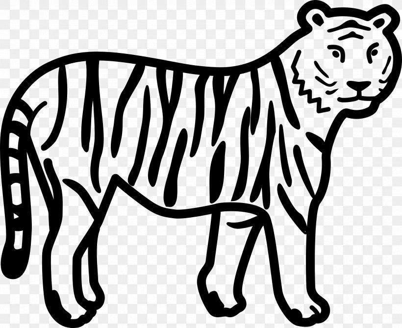 Bengal Tiger White Tiger Black And White Black Tiger Clip.