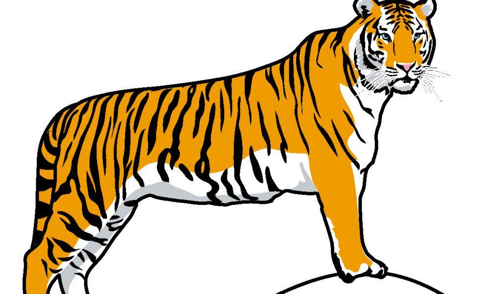 Characterstics Of Bengal Tiger Tigers Lead Solitary, Tiger New.