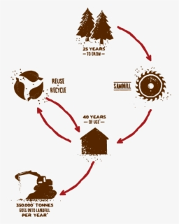 Free Life Cycle Clip Art with No Background , Page 2.