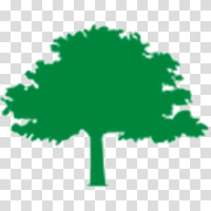 Urban forestry transparent background PNG cliparts free.