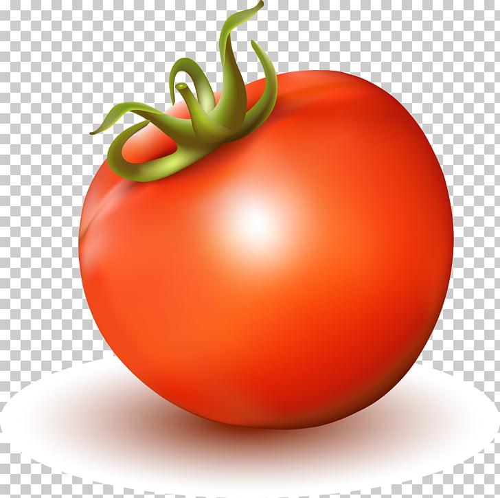 Tomato juice Tomato soup, realistic tomato PNG clipart.