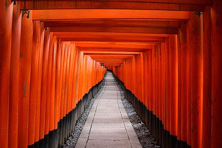 Pathway underneath tori gates.