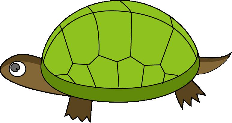 Free Tortoise Clipart, Download Free Clip Art, Free Clip Art.