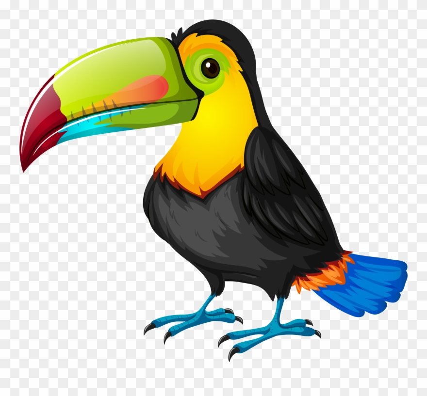 Toucan Clipart 1 Clip Art Bird.