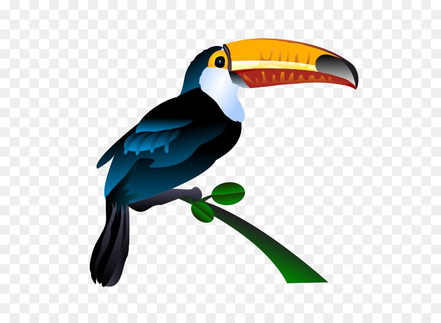 Bird Toucan Clip art.