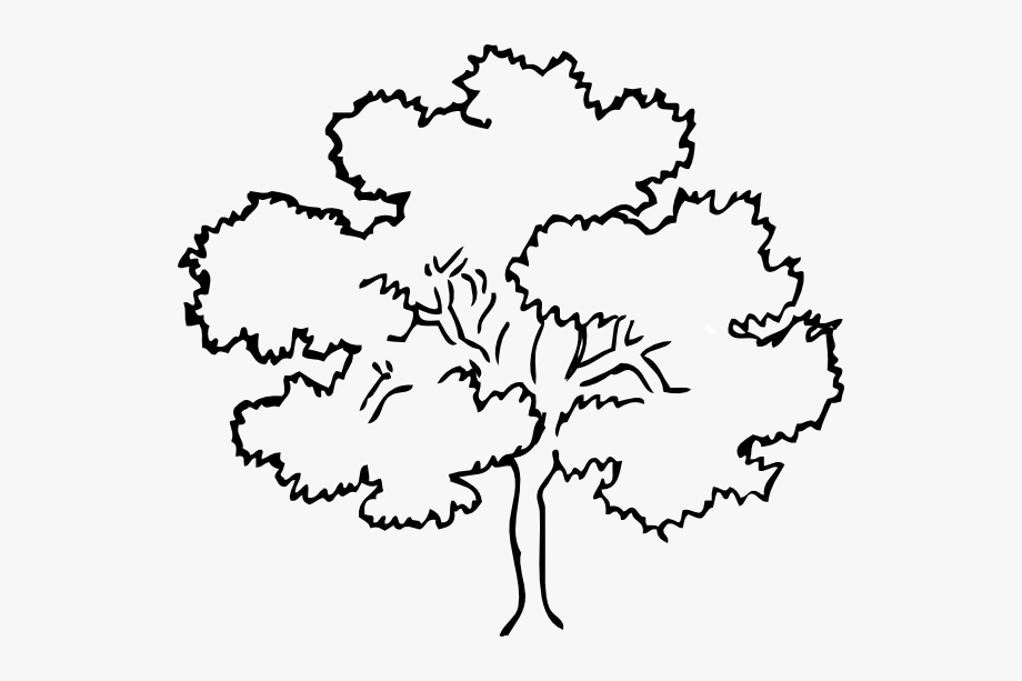 Family Tree Clip Art Black And White #100891.