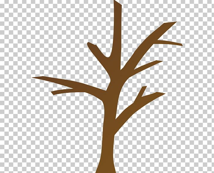 Trunk Tree Branch PNG, Clipart, Arecaceae, Bare Cliparts.