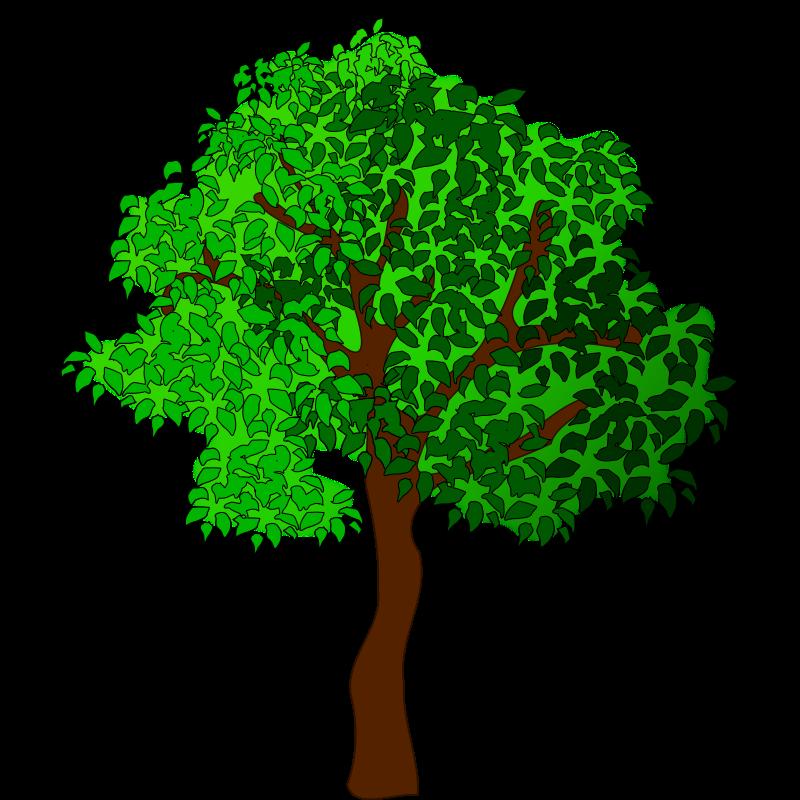 Tree Clipart Vector.