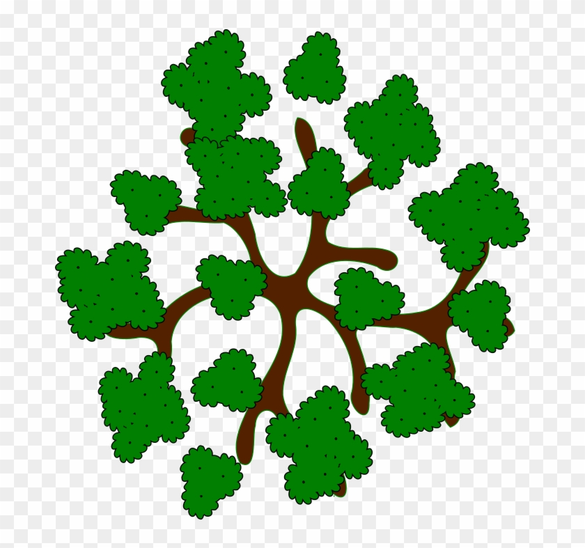 28 Collection Of Trees Clipart Top View.