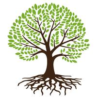 Tree Roots Free Vector Art.
